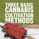 Tres Métodos Básicos de Cultivo de Cannabis