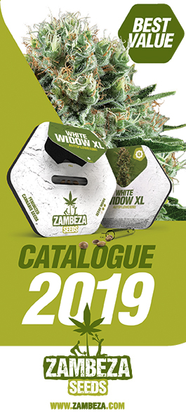 Zambeza Catalogue 2019