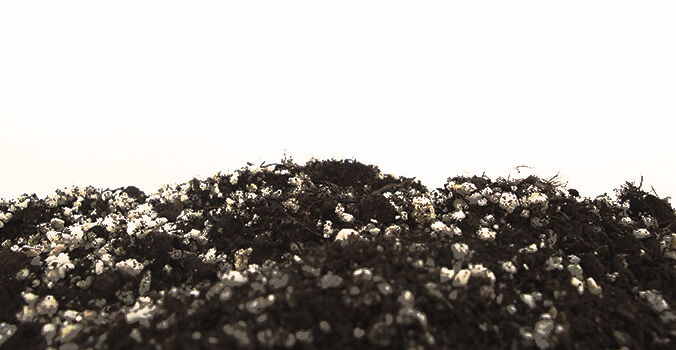 Vermicompost fertilizante Perlita