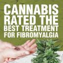 El Cannabis Calificado como el Mejor Tratamiento para la Fib