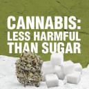 El Cannabis es Menos Perjudicial que el Azúcar