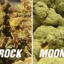 Moonrocks y sunrocks: ¿demasiado potentes?