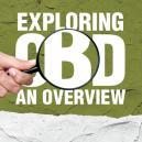 Analizando el CBD: Resumen