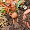 Cómo preparar y usar compost casero para cultivar cannabis