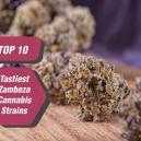 Las 10 variedades de cannabis de Zambeza con mejor sabor