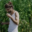 Cómo empezar a cultivar cannabis: guía para principiantes